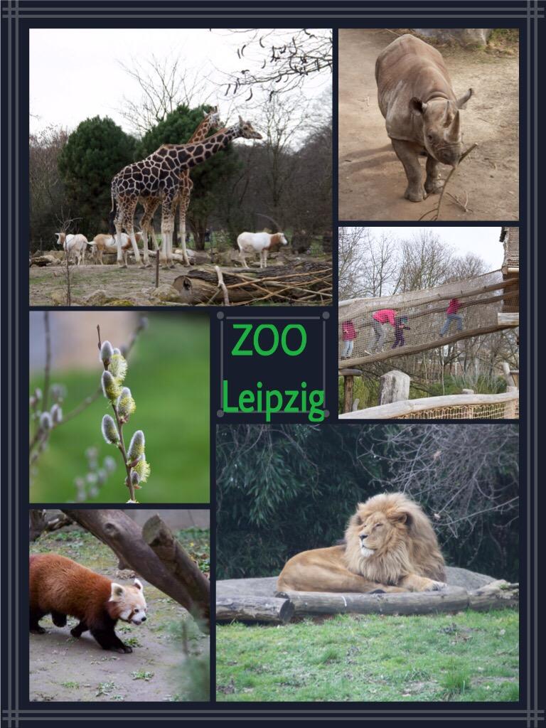 Bilder Zoo Leipzig 03/2016
